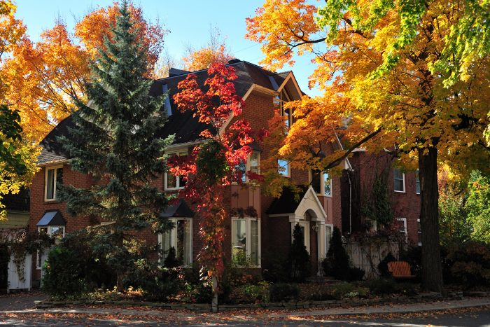 the outside of a home surrounded by lots of fall foliage